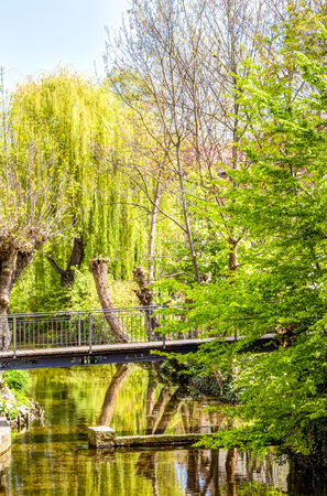 natural bridge state park: The Erfurt city park with trees and a bridge in Germany Stock Photo