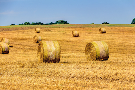 harvest time: Golden haye bales in the harvest time in Germany Stock Photo