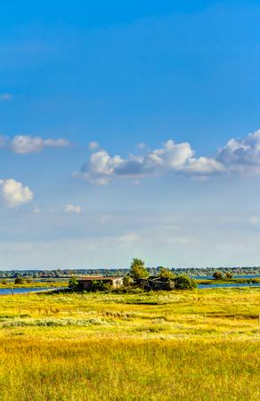 oilseed: Yellow oilseed rape field under the blue sky with sun