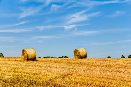 Golden haye bales in the harvest time in Germany Stock Photo