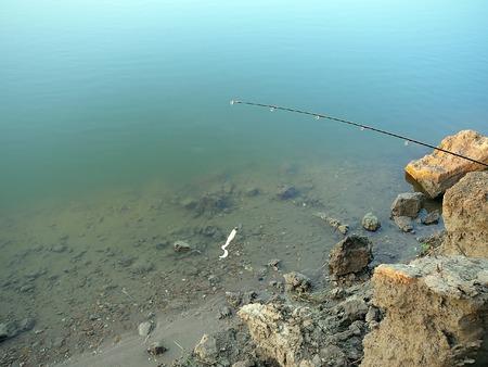 jigging: jig bait on the coast