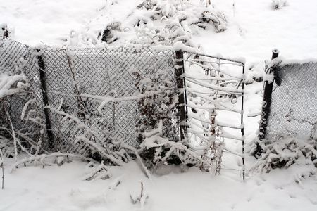 deserted gate and fence in snow photo