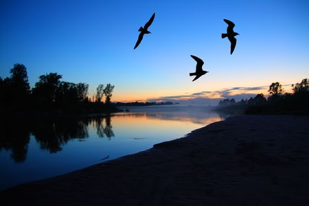 river dusk landscape with gulls after sunset Stock Photo - 3375293