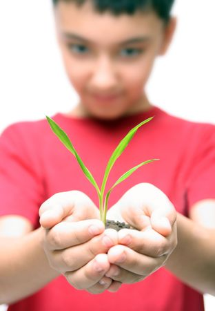 asian boy holding green plant in hands Stock Photo - 5946639
