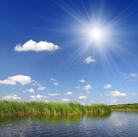 summer pond under blue sky background