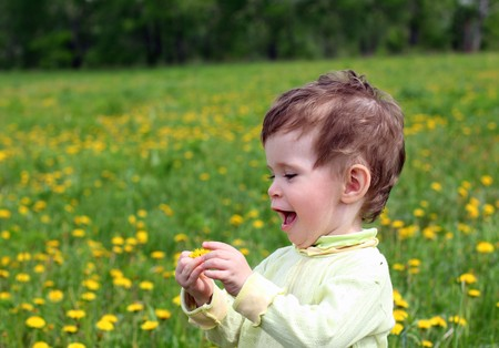 baby girl picking dandelion flowers on meadow photo