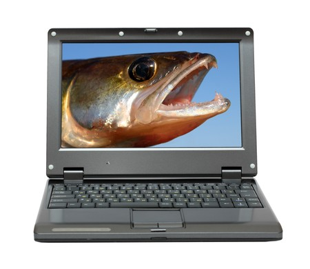 small laptop with zander jaws -  fishing themes Stock Photo - 7269703