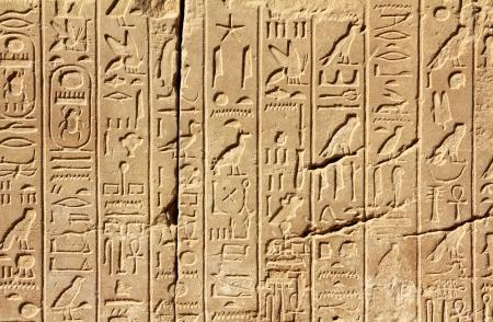 ancient egypt hieroglyphics on wall in karnak temple photo
