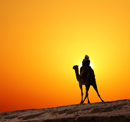 bedouin: bedouin on camel silhouette against sunrise in africa Stock Photo