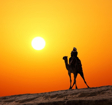 camel silhouette: bedouin on camel silhouette against sunrise in africa Stock Photo