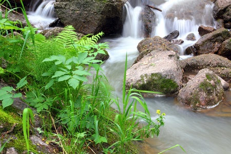 waterfall stream among rocks in summer woods photo