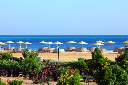 tropical beach and Red Sea in Egypt Stock Photo - 12187151