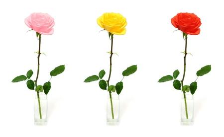 single rose in vase - three color options Archivio Fotografico