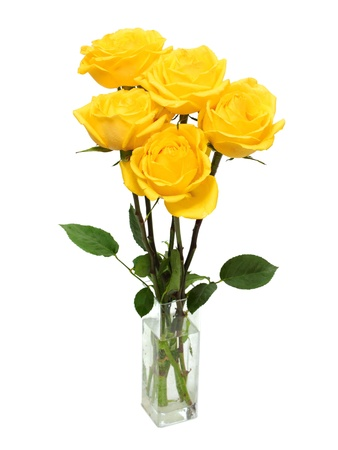 yellow roses: bouquet of yellow roses isolated on white Stock Photo
