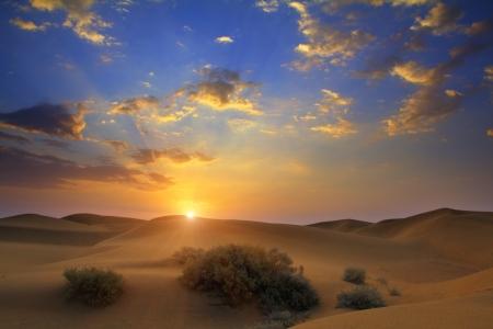 Sonnenaufgang in Tar Wüste Indiens Standard-Bild