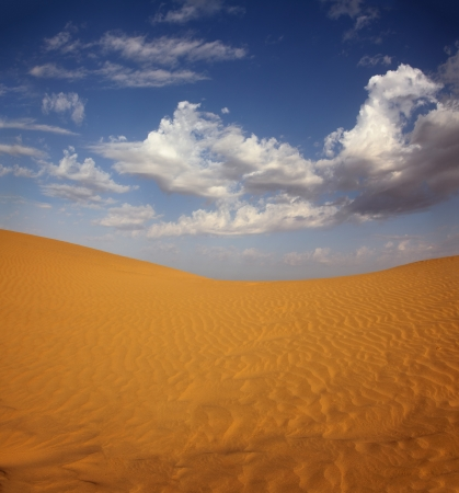 landsape in Tar desert India Stock Photo - 17178384