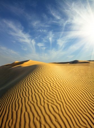 beatiful evening landscape in desert photo