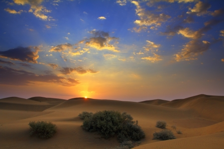 sunrise in Tar desert India photo