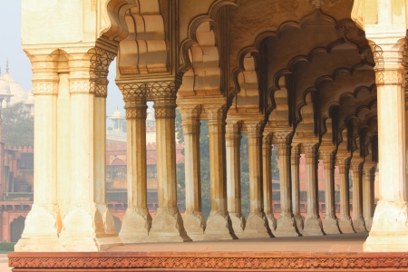 columns in palace - agra fort India photo