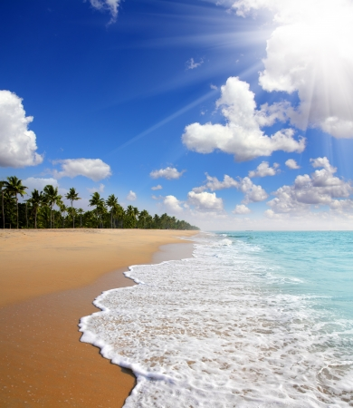 beautiful beach landscape - ocean in India photo