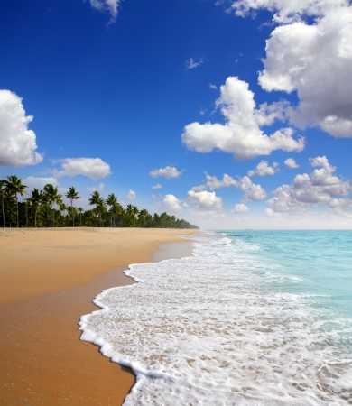 beautiful beach landscape - ocean in India Stock Photo