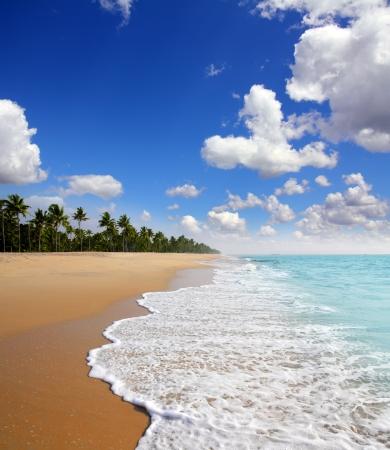 beautiful beach landscape - ocean in India Stockfoto