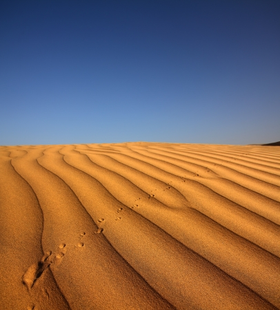 footprint on sand dune in desert at evening photo