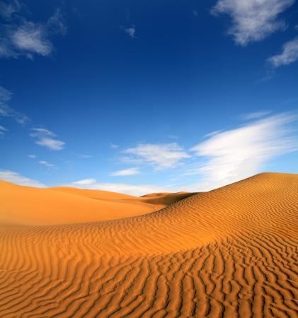 beatiful evening landscape in desert 스톡 콘텐츠