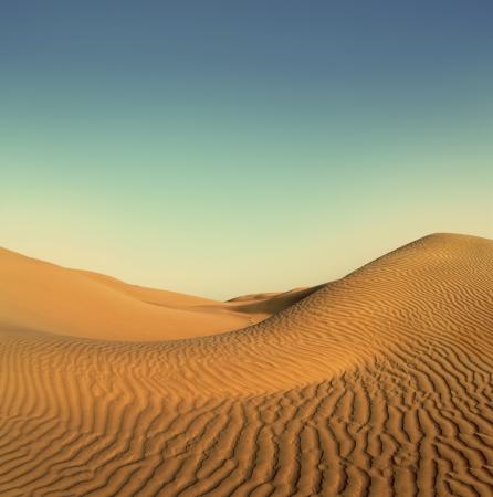 lifeless: beatiful evening landscape in desert - vintage retro style