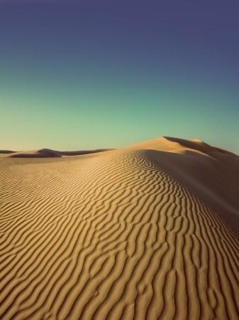 beatiful evening landscape in desert - vintage retro style