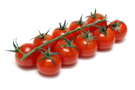 cherry tomatoes on stem isolated on white photo