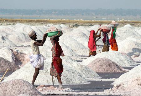 mined: SAMBHAR, INDIA - NOVEMBER 19, 2012: Indian workers mined salt in salt lake Sambhar