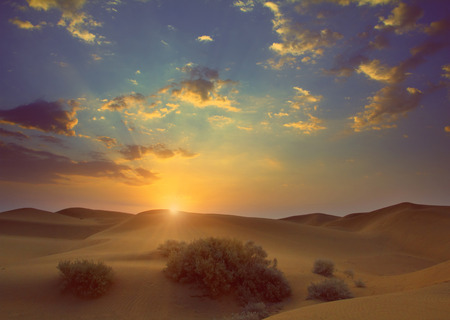sunrise in Tar desert India - vintage retro style photo
