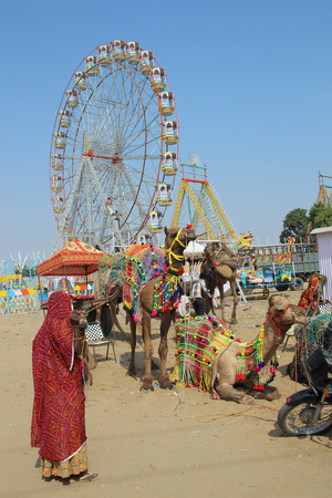 indian woman, ornate camels and ferris wheels at Pushkar camel fair - India photo