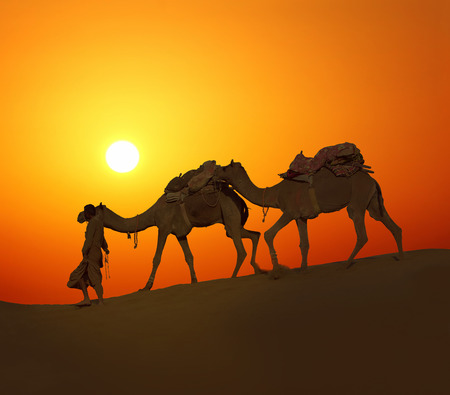 cameleer leading caravan of camels in desert - silhouette against sunset photo