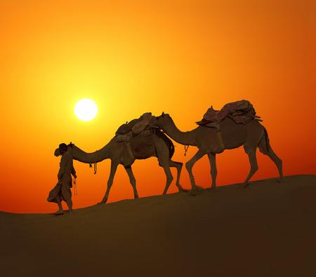 cameleer leading caravan of camels in desert - silhouette against sunset Stockfoto