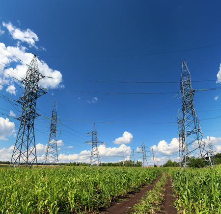 electricity pylon: landscape with electric masts and road in green field