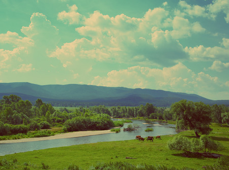 summer landscape in South Ural with river between mountains and grazing horses - vintage retro style photo