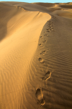 Human footsteps in the sand in the Desert photo