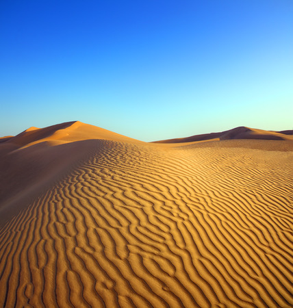 oasis at sunrise: beatiful evening landscape in desert Stock Photo