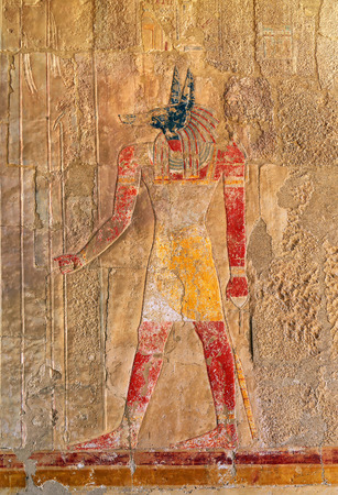 anubis: ancient egypt color image of anubis on wall in luxor