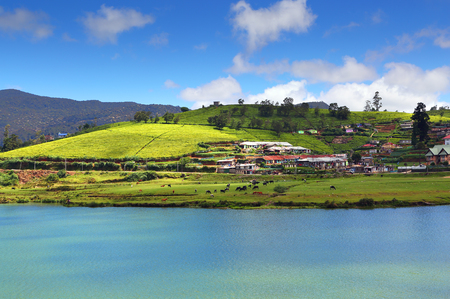 sri: landscape with Gregory lake in Nuwara Eliya - Sri Lanka Stock Photo