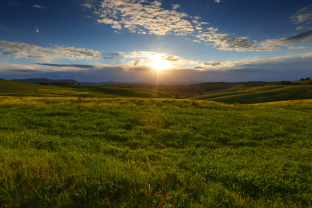 typical: Beautiful landscape with field at sunset in Tuscany, Italy Stock Photo