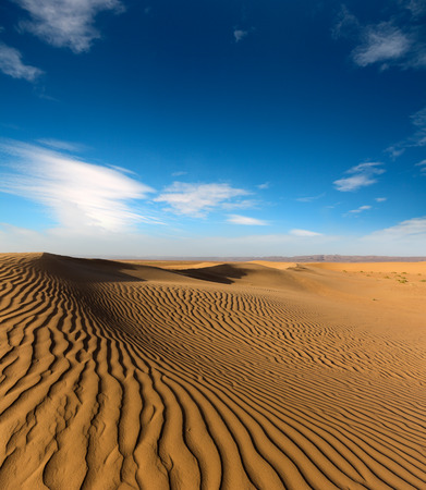 beatiful evening landscape in desert Standard-Bild