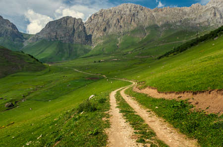 Road in mountains Reklamní fotografie