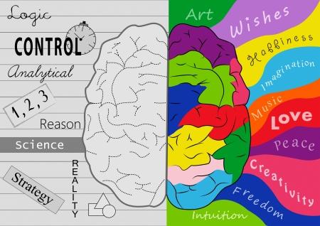 Brain creativity Archivio Fotografico
