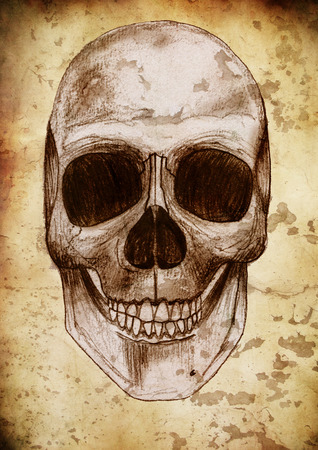 cranial skeleton: Retro skull and paint Stock Photo