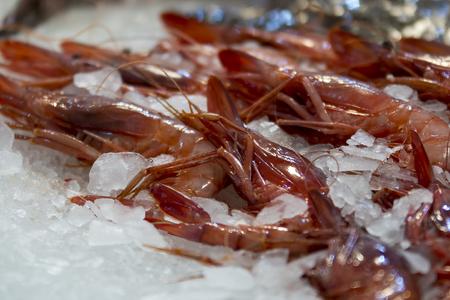 fishmonger: Fresh red prawn at the fishmonger Stock Photo