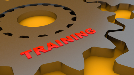 3d rendering. Gear and training word