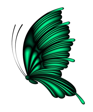 Vector abstract green butterfly isolated on white background Illustration